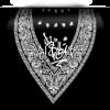 Signature Bandana CJ Stas